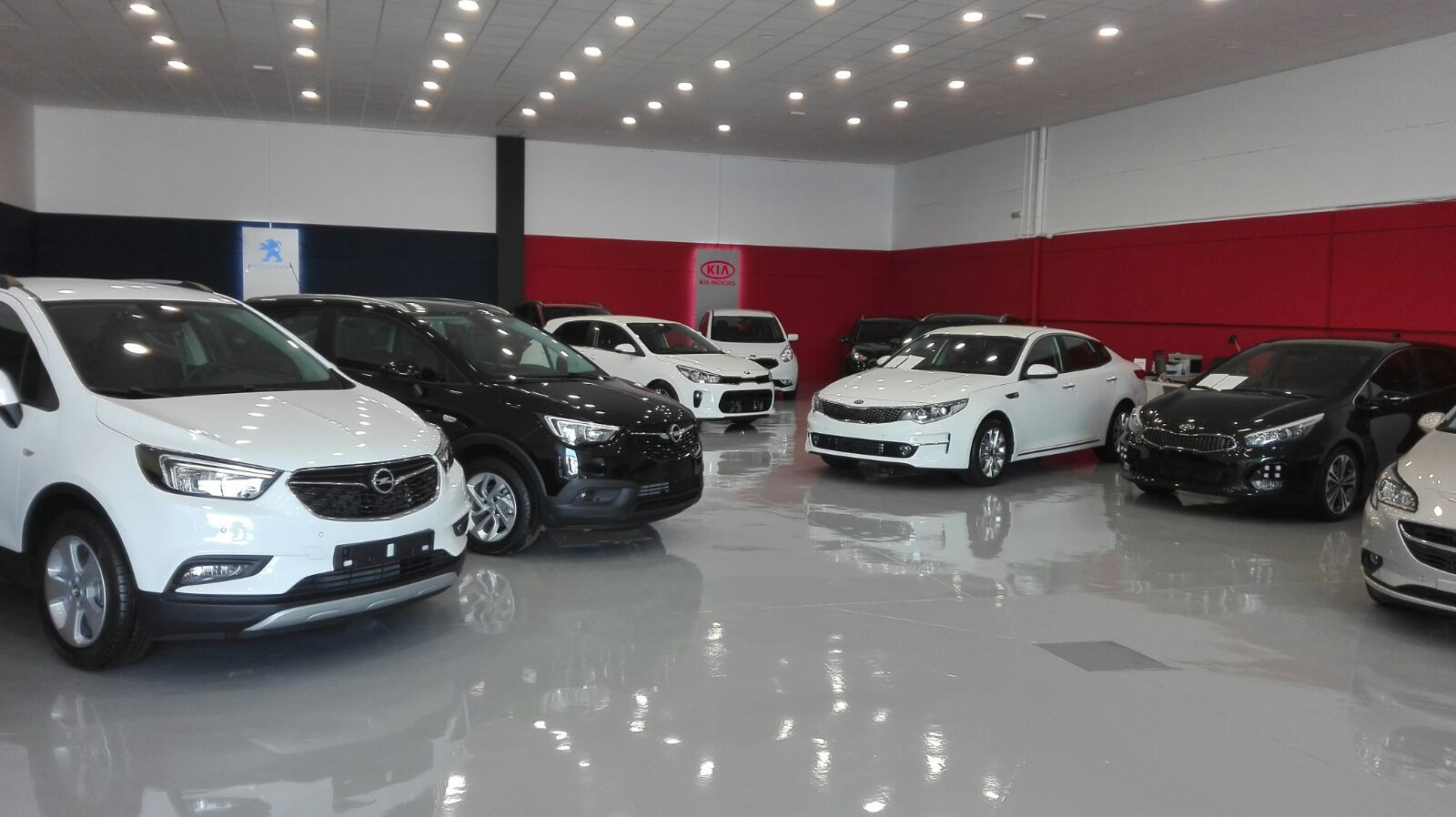 Reformas en garajes en Cádiz