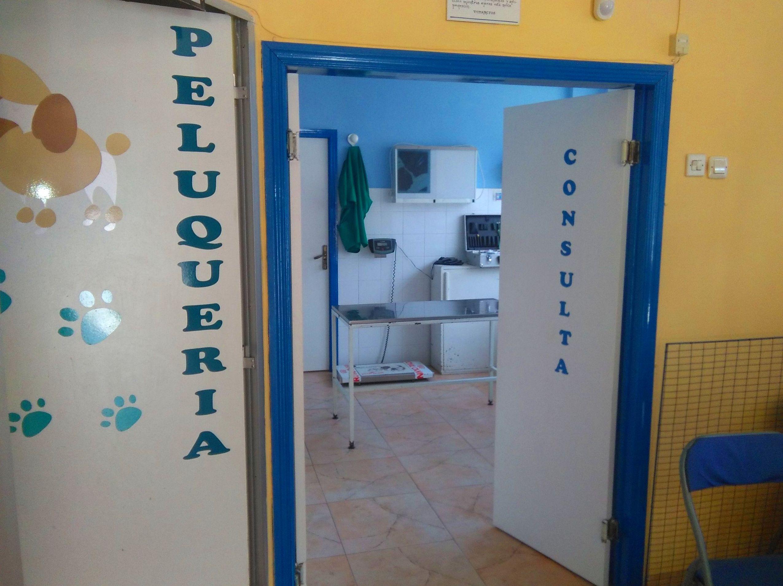 Foto 3 de Veterinarios   en La Adrada | Clínica Veterinaria La Adrada