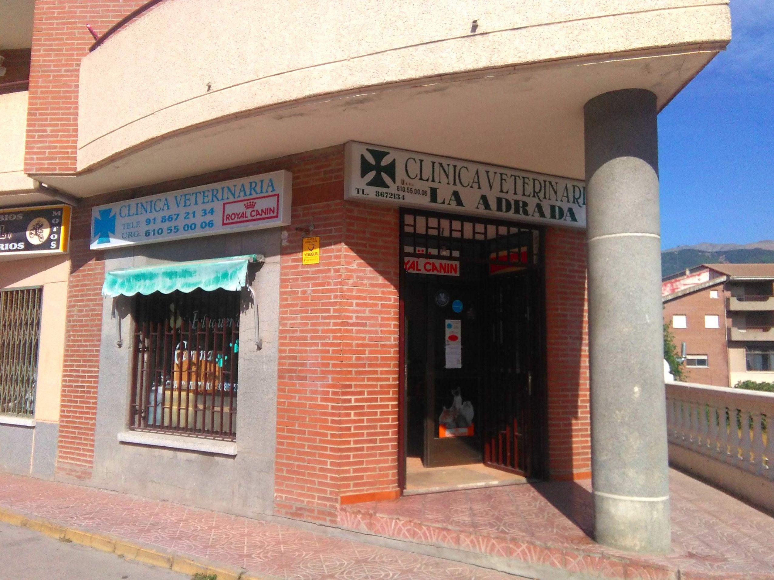 Foto 1 de Veterinarios   en La Adrada | Clínica Veterinaria La Adrada