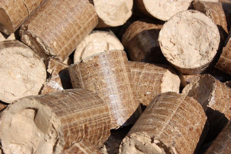 Transporte por carretera de biomasa: Servicios de Foresfri Borrero