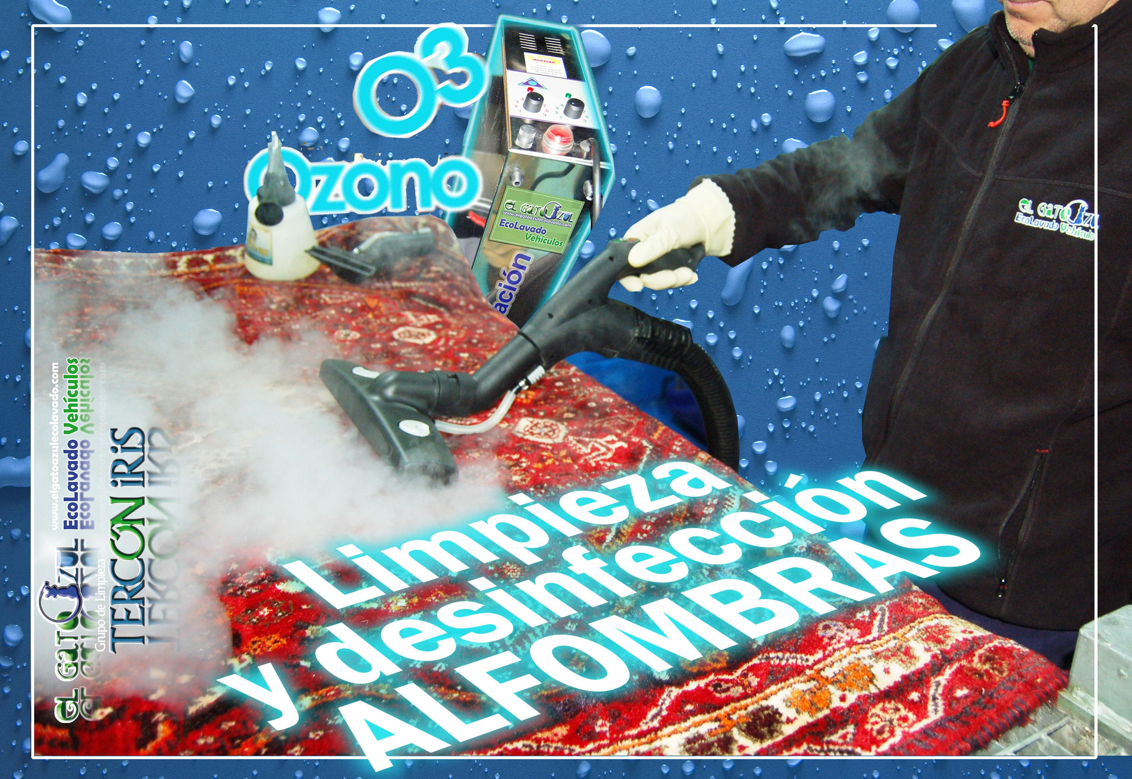 Foto 6 de Limpieza de vehículos en    El Gato Azul Ecolavado Vehículos