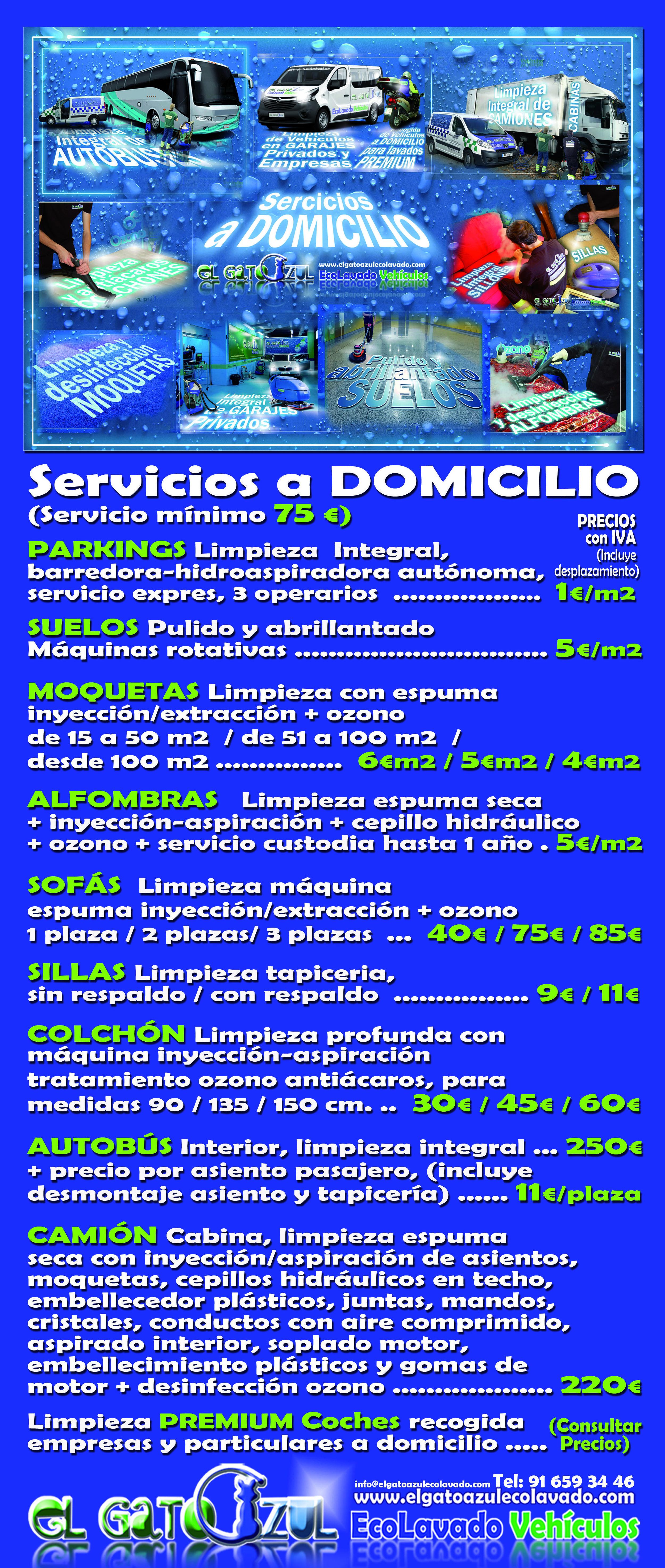Servicios a empresas: Servicios y Precios de El Gato Azul Ecolavado Vehículos