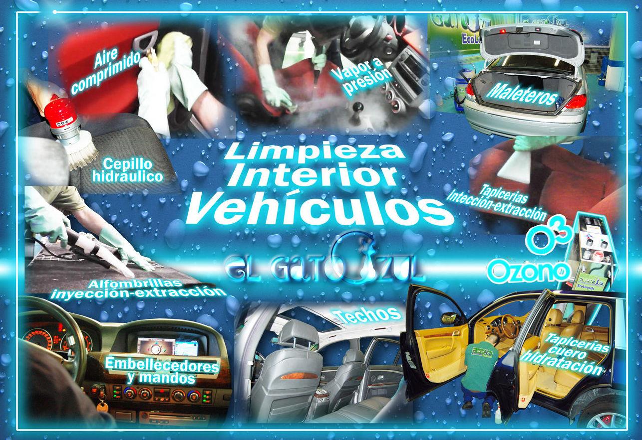 Foto 8 de Limpieza de vehículos en  | El Gato Azul Ecolavado Vehículos