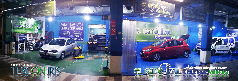 Foto 3 de Limpieza de vehículos en  | El Gato Azul Ecolavado Vehículos