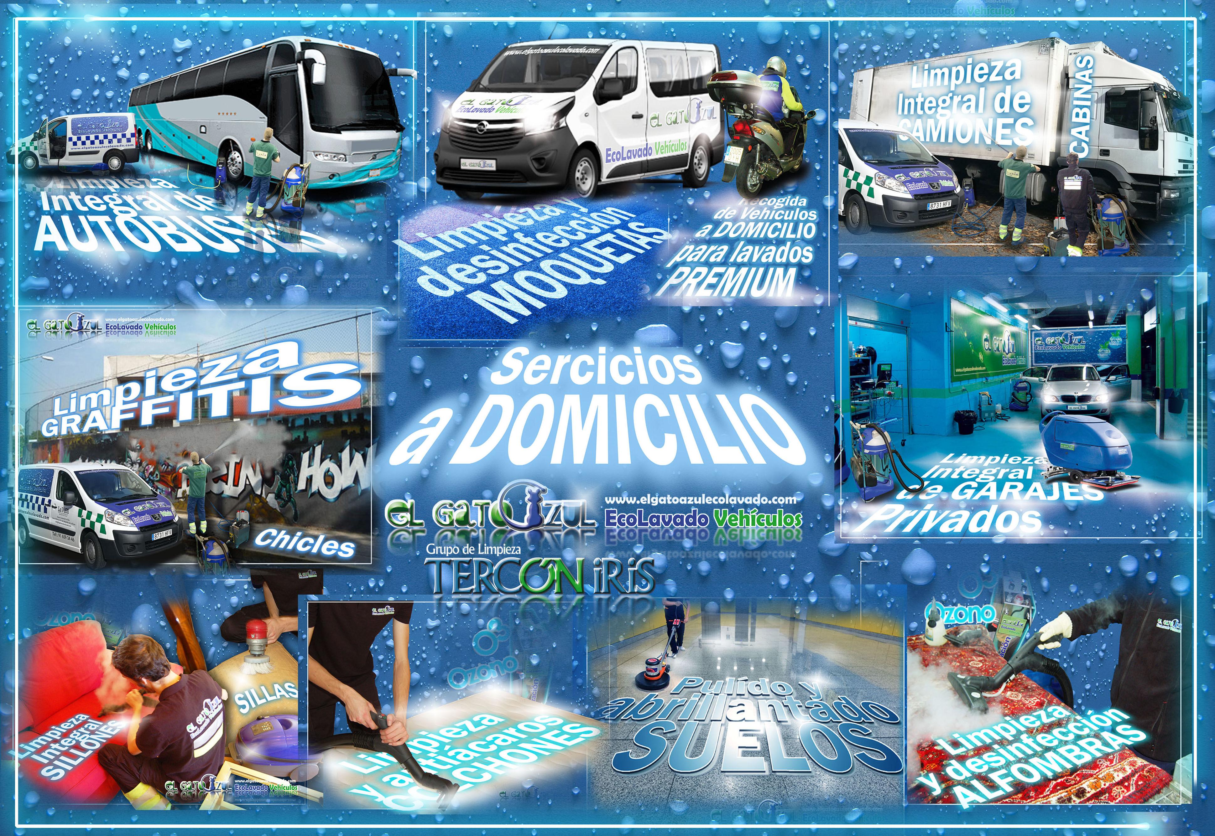 Foto 4 de Limpieza de vehículos en  | El Gato Azul Ecolavado Vehículos