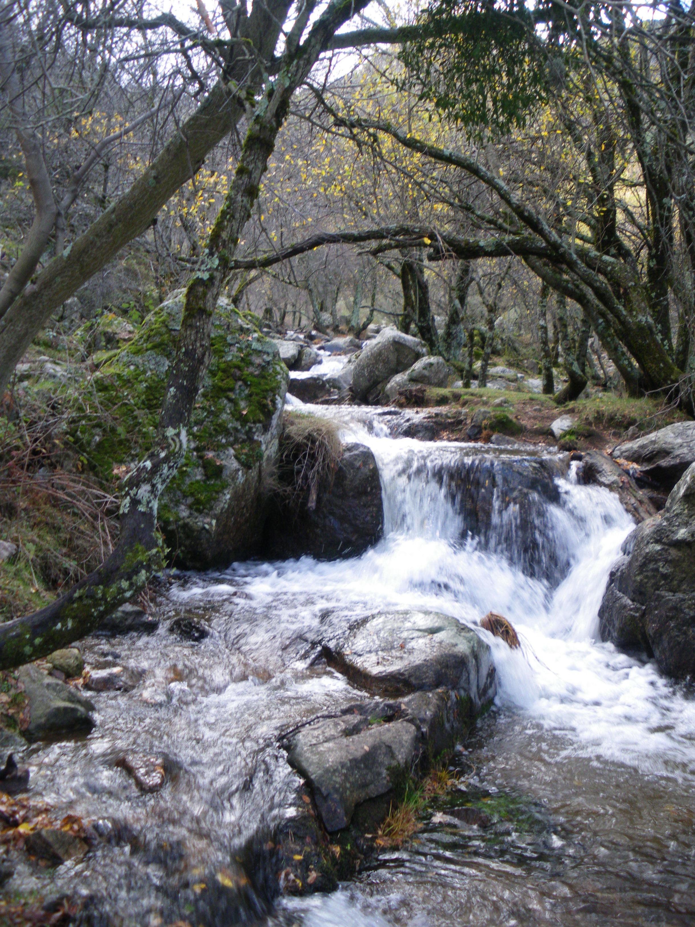 Dia 12 ENERO SENDERISMO Madrid Cascada del Pulgatorio: CALENDARIO DE ACTIVIDADES de Información