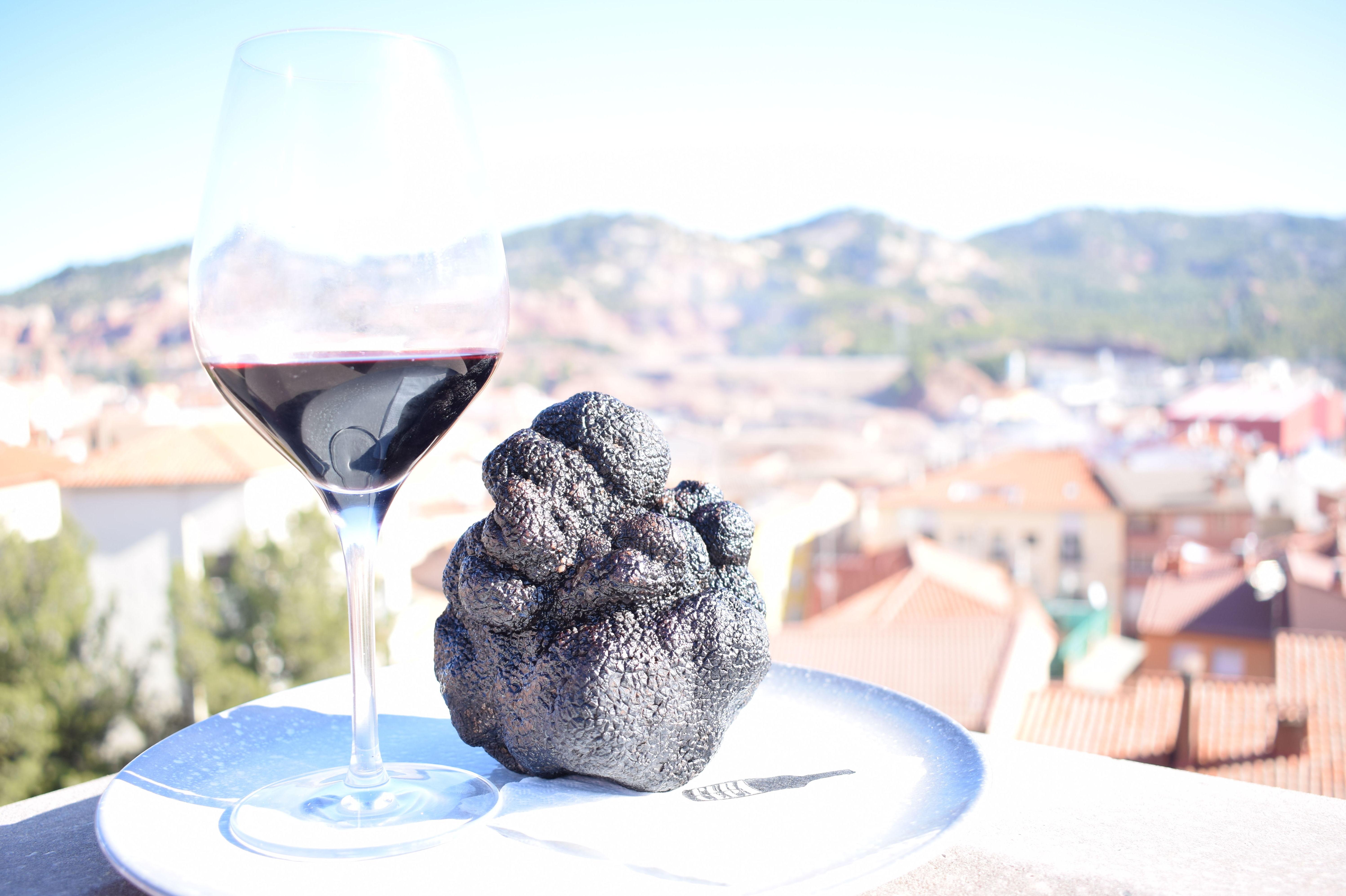 Trufa de 570 gr. que se esta sirviendo estos días en las Jornadas de trufa negra de Teruel