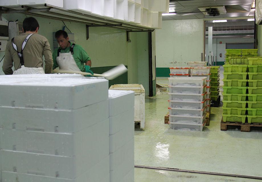 Refrigerado y almacenaje: Servicios de Pescados A Cigurria