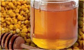 Miel y polen: Productos de Natur Sandoval
