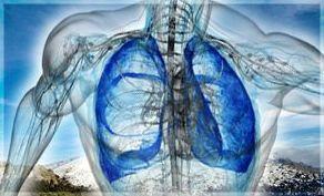 Afecciones respiratorias: Productos de Natur Sandoval