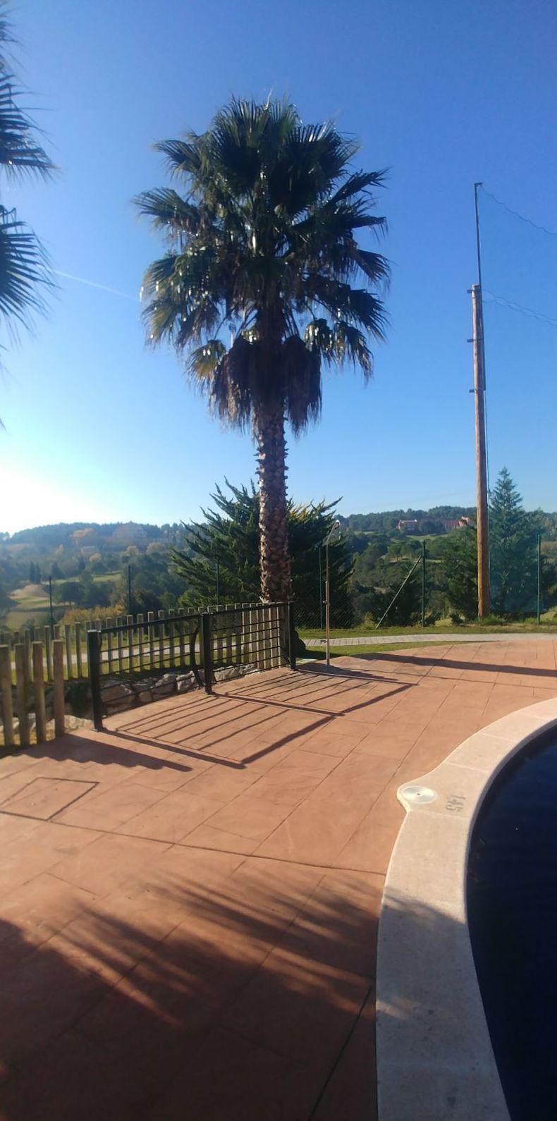 Foto 2 de Diseño y mantenimiento de jardines en Masquefa | Jardinería Moreno