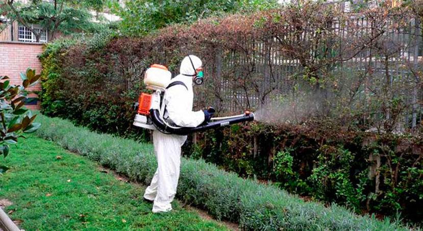 Tratamientos fitosanitarios: Servicios de Jardinería Moreno