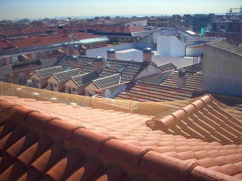 Instalación de red antiaves en tejado, cubierta o alero.