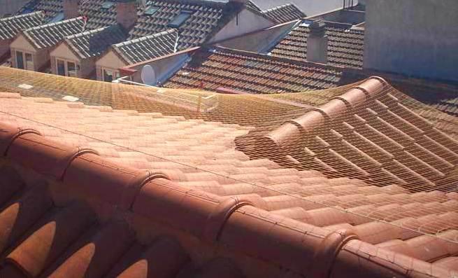 nstalación de red o pinchos antiaves en tejado, cubierta o alero.