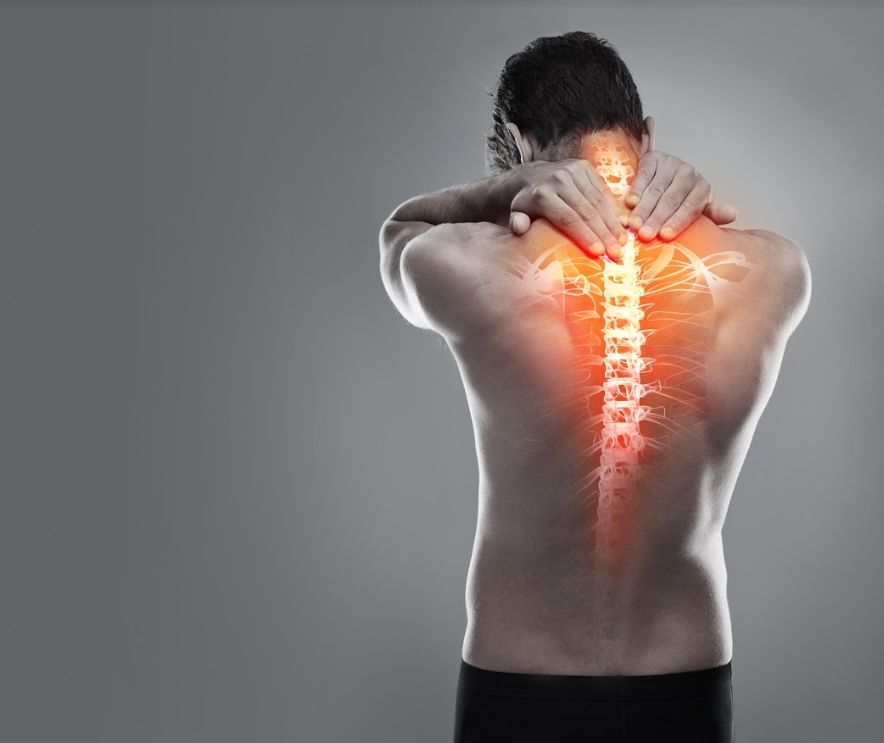 Método BI*OS (Martillo neuropercutor: regulación estructural): Cursos de Instituto Aragonés de Osteopatía