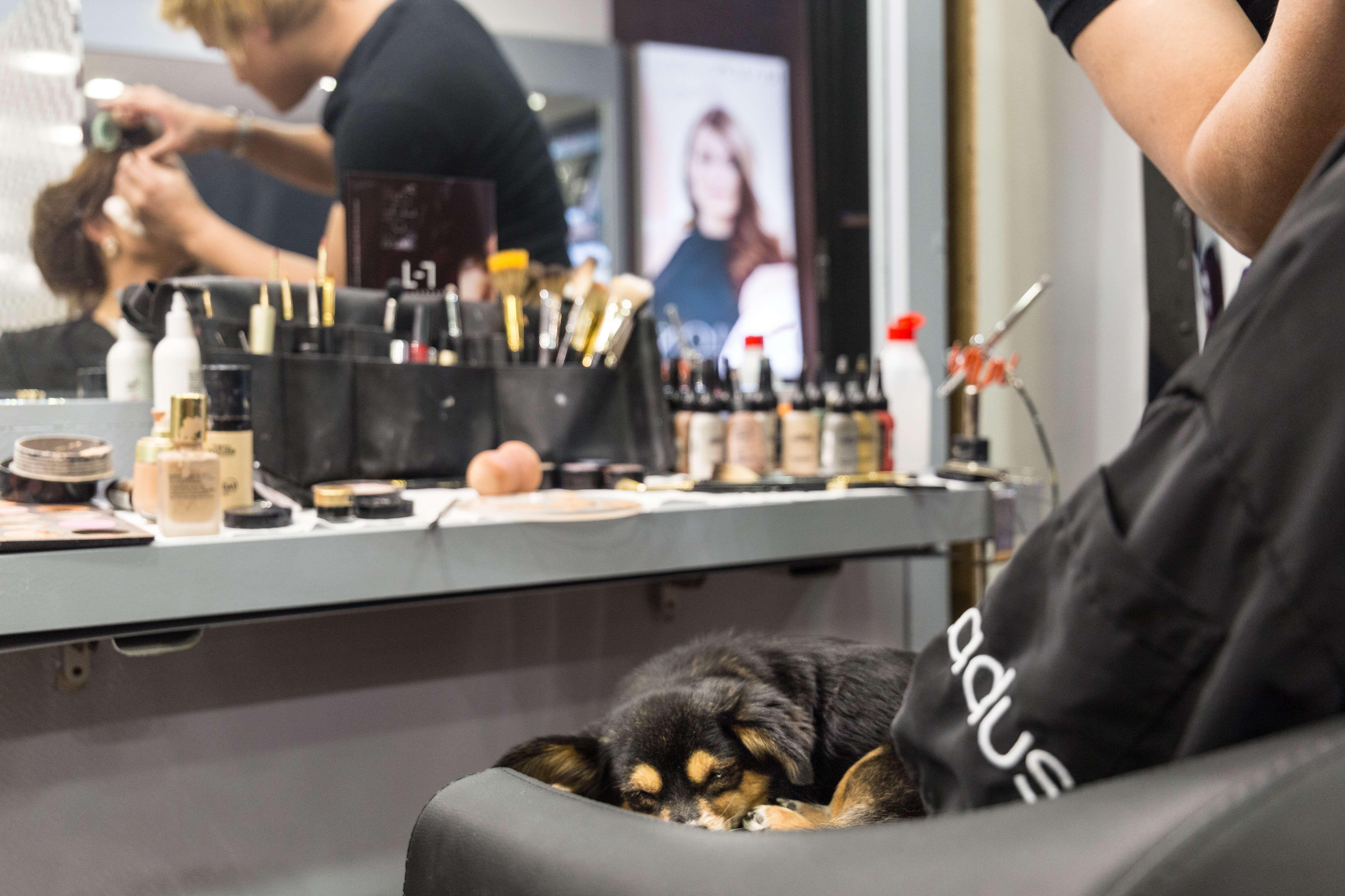 Peluquería y maquillaje en Barcelona