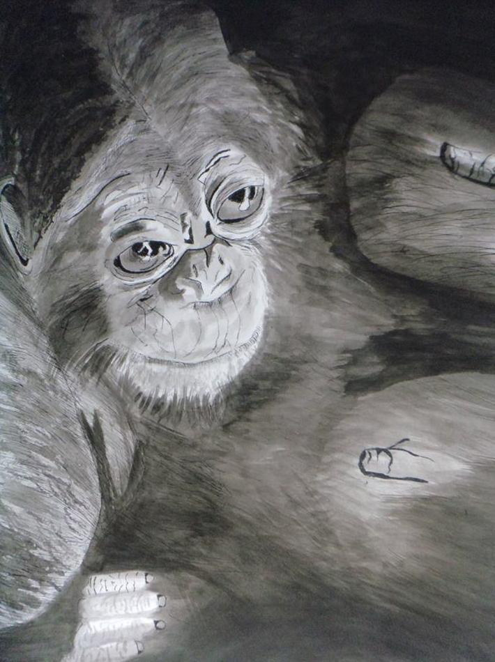 Tinta china : Servicios   de Inicios Academia de Dibujo