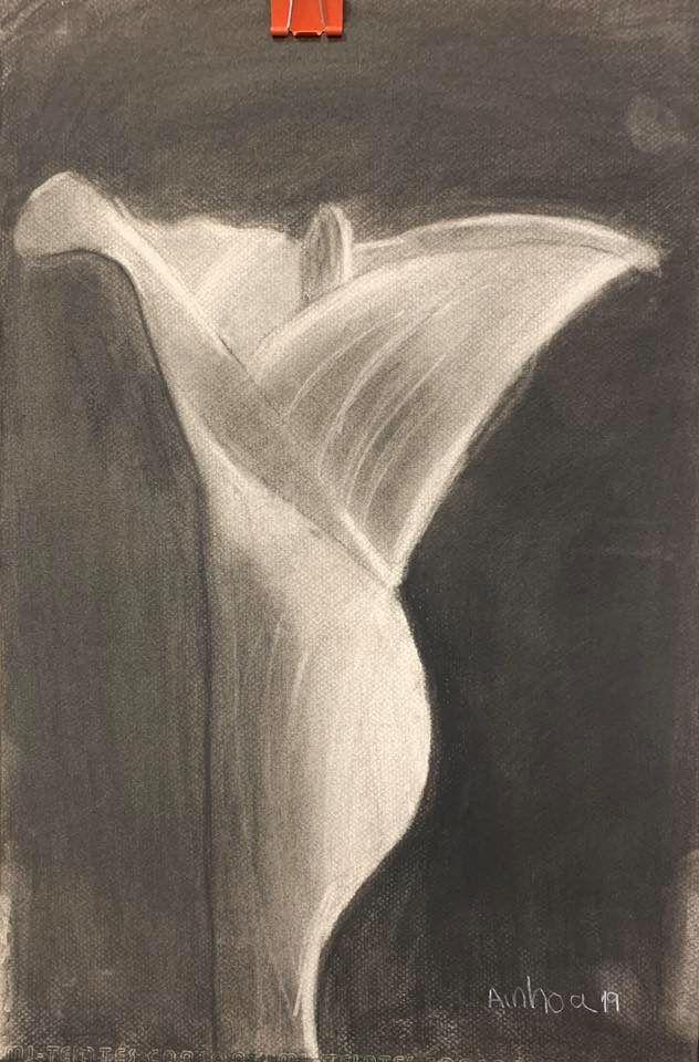 Foto 78 de Academias de dibujo y pintura en San Fernando de Henares   Inicios Academia de Dibujo