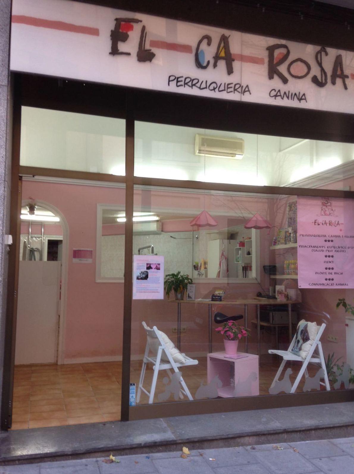 Fachada de nuestra peluquería para mascotas en Mataró
