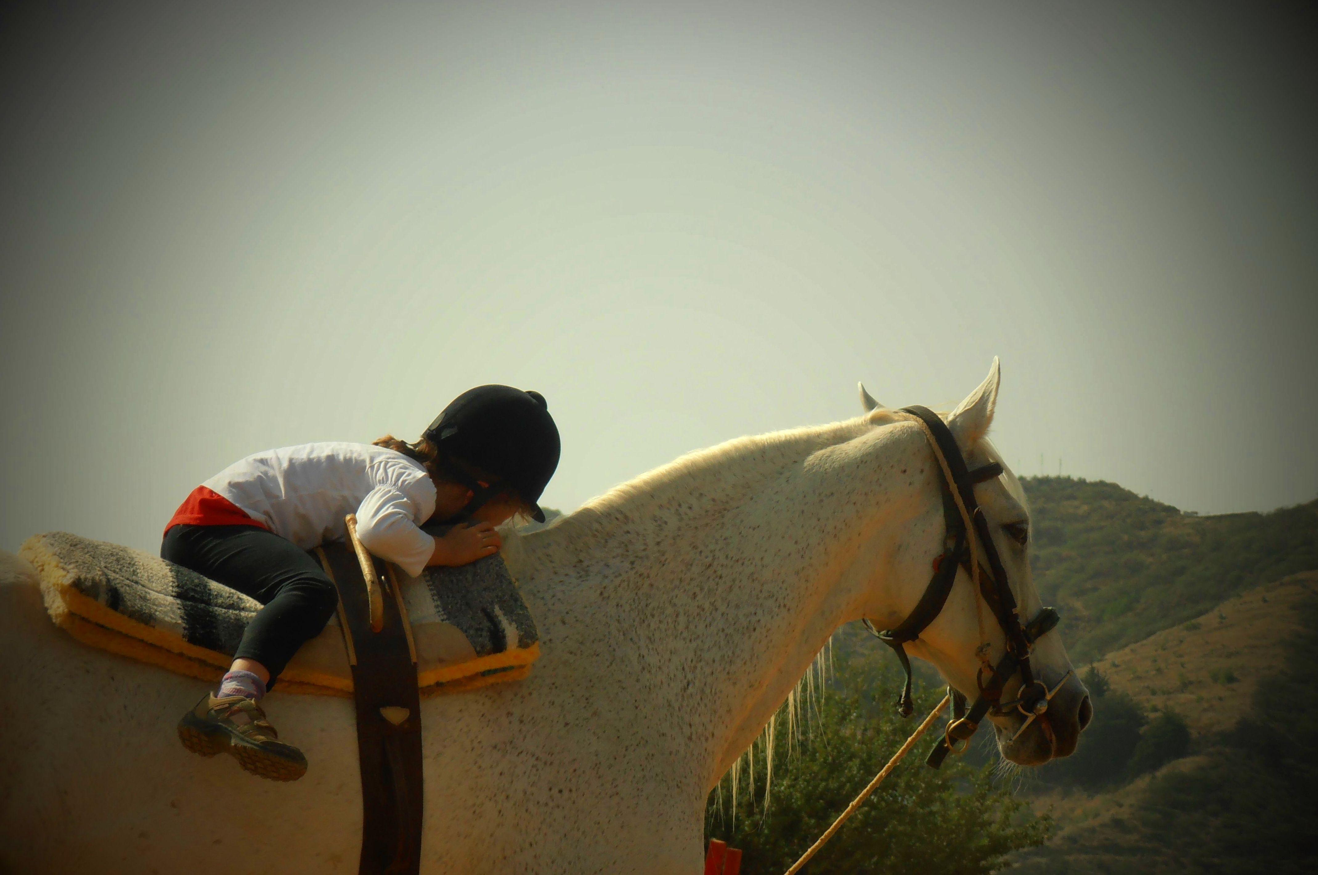 Intervenciones asistidas con caballos (IAC): Servicios de Centro Hípico San Mateo