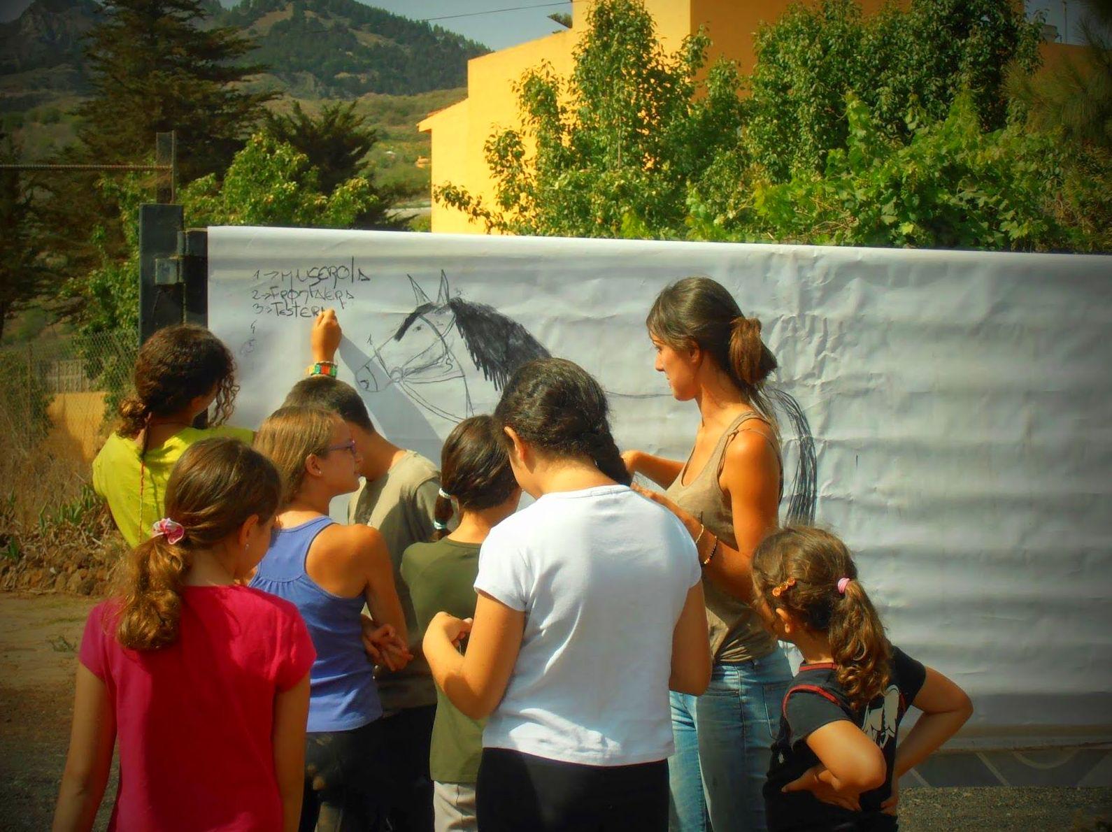 Actividades didácticas para Centros Educativos: Servicios de Centro Hípico San Mateo