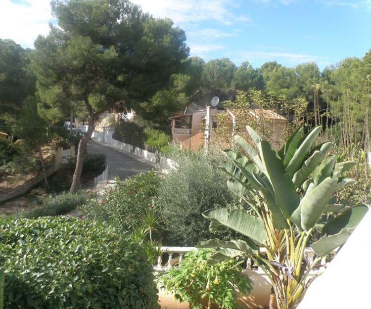 Agentes inmobiliarios en Mallorca