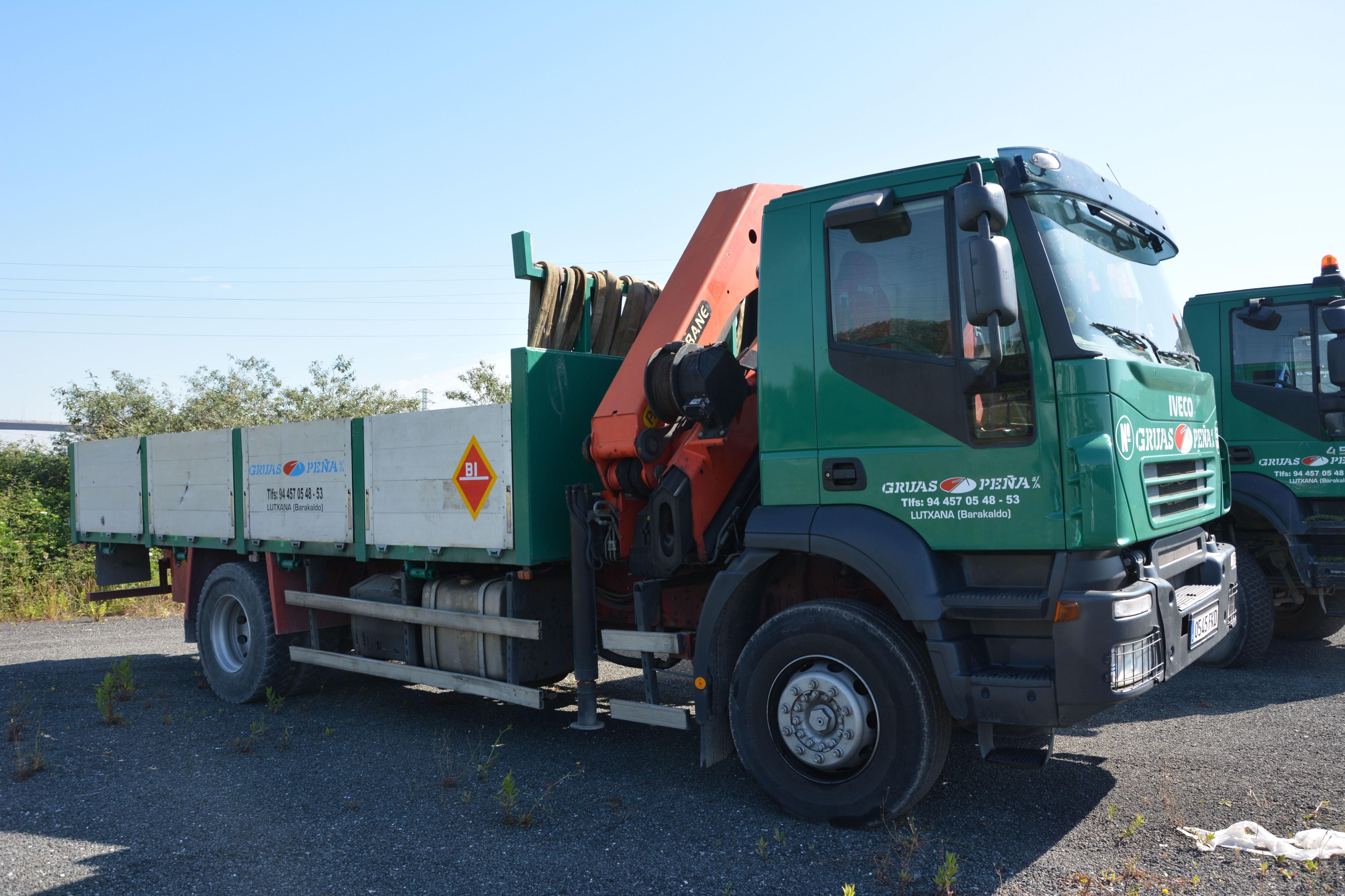 Foto 11 de Alquiler de camiones con grúa en Barakaldo | Camiones con Grúas Peña
