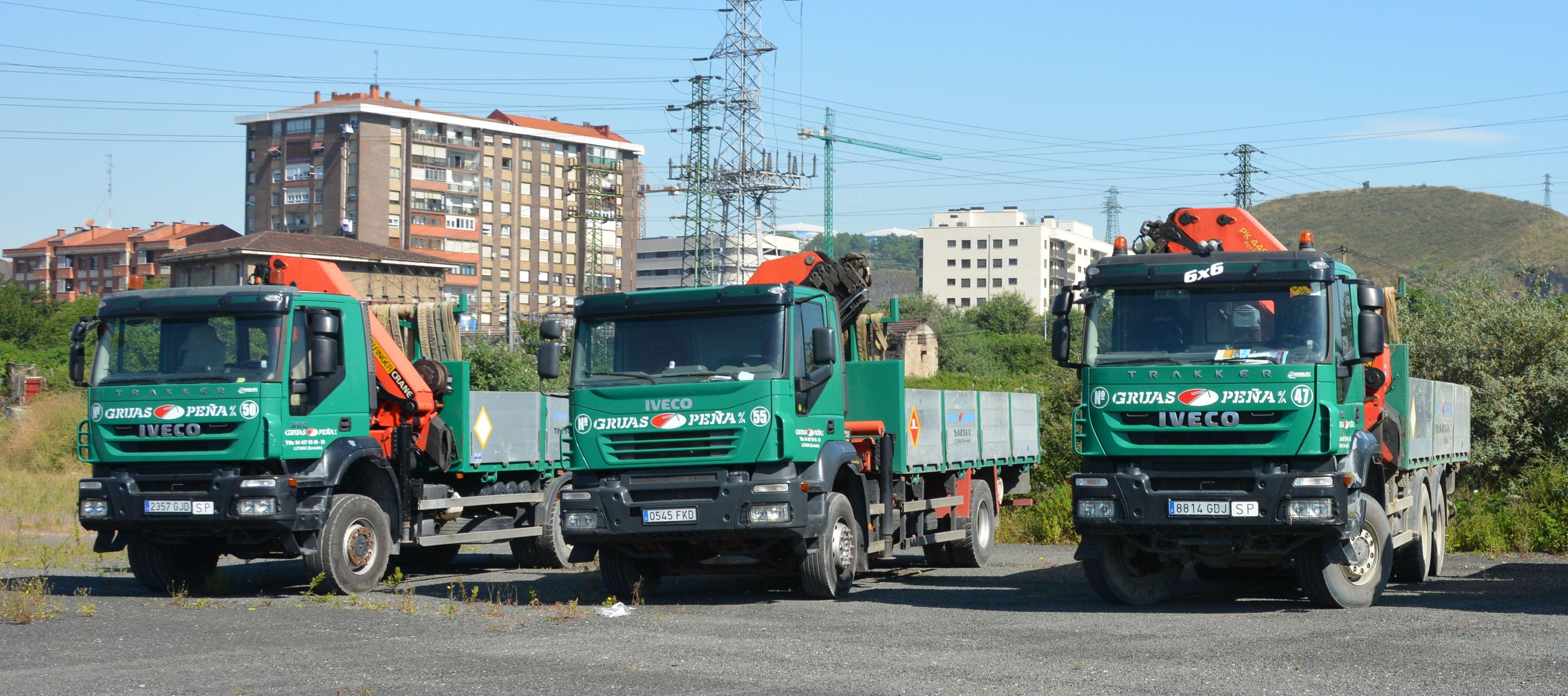Foto 8 de Alquiler de camiones con grúa en Barakaldo | Camiones con Grúas Peña