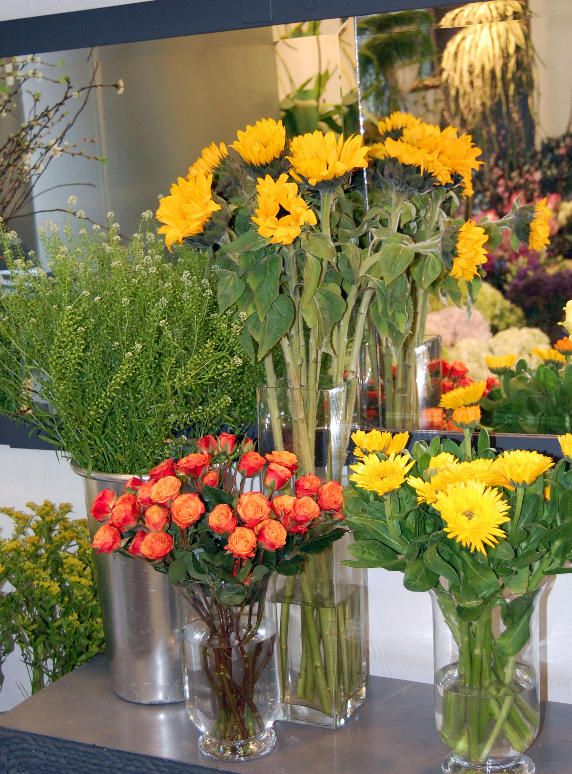 Girasoles y otras flores