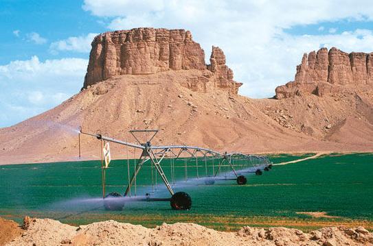 el agua cambia desierto en vergel