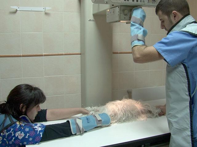 Diagnósticos: Servicios de Clínica Veterinaria San Francisco