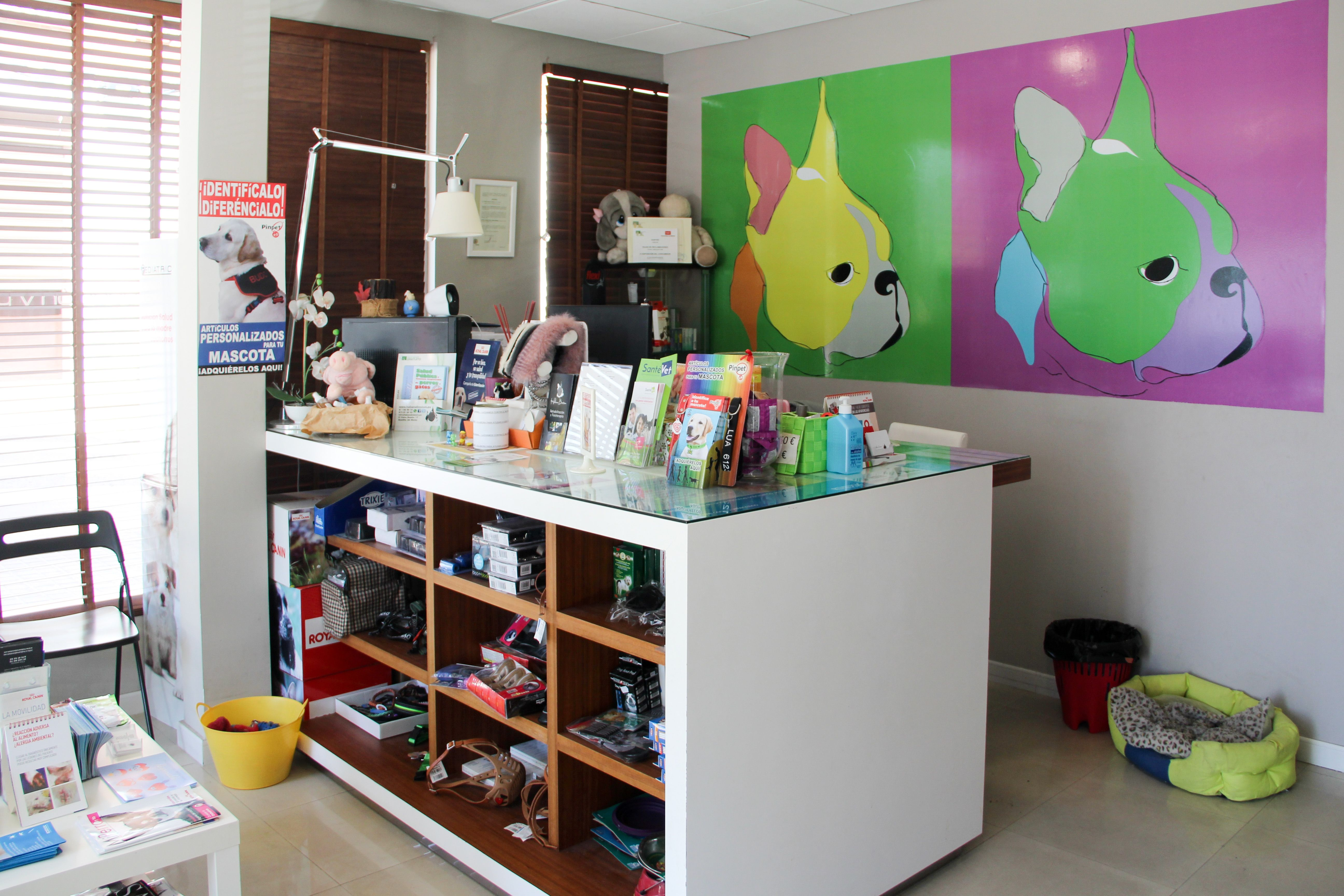 Foto 4 de Clínica veterinaria en Boadilla del Monte | Clínica Veterinaria Habana Boston