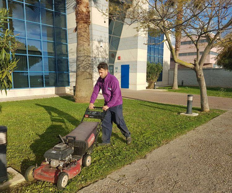 Trabajos de jardinería en Cádiz