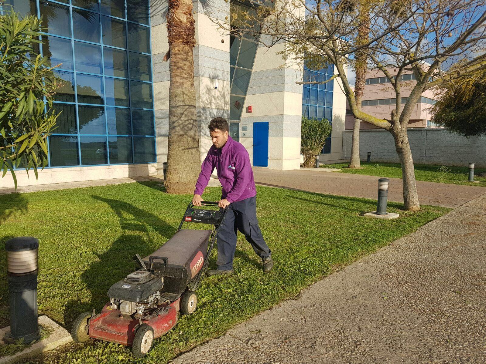 Jardines y podas: Servicios de Limpiezas Unika