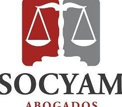 Sentencia del Tribunal Constitucional sobre plusvalía.