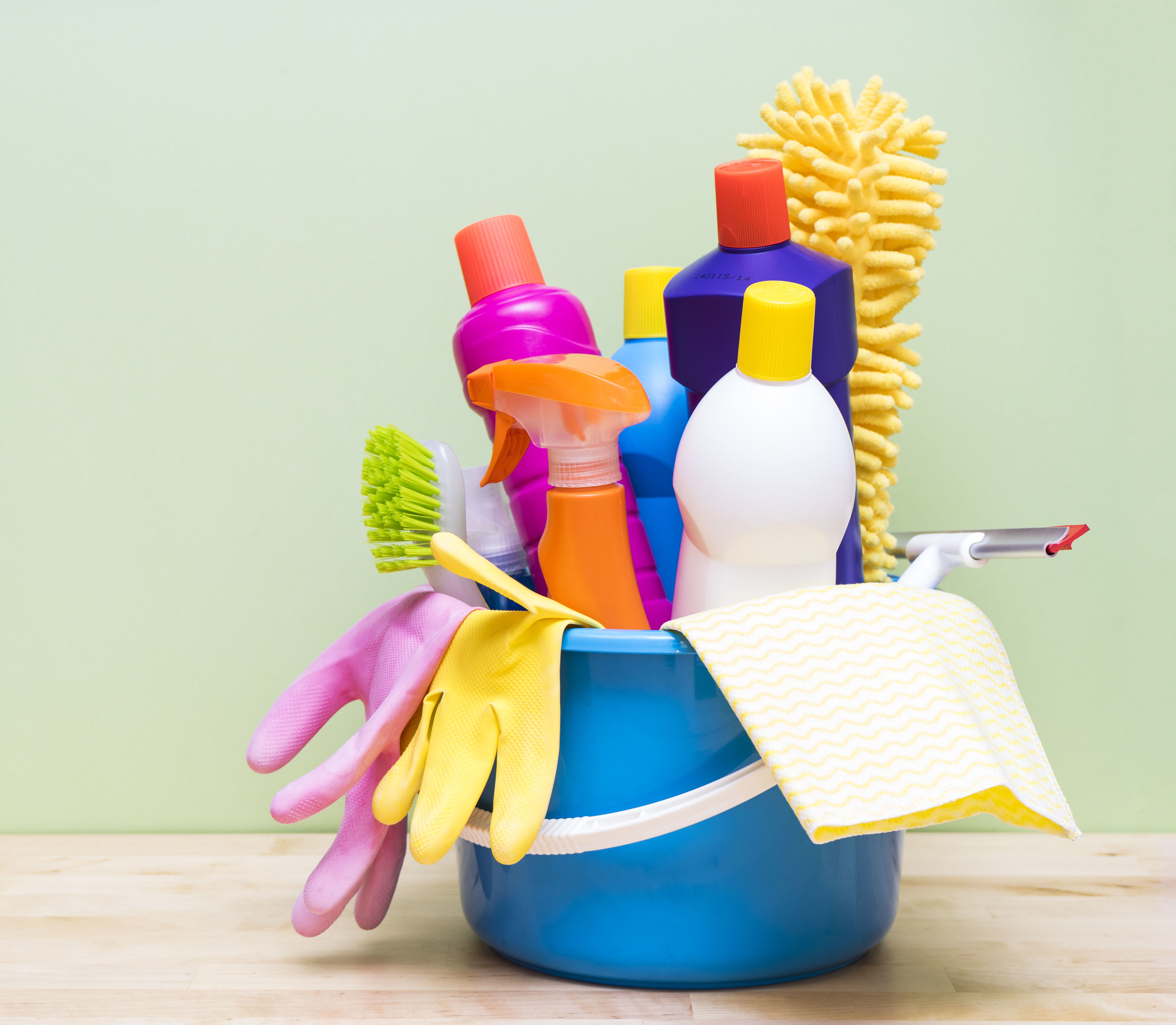 Limpieza de interiores: Servicios de 2007 Robenska