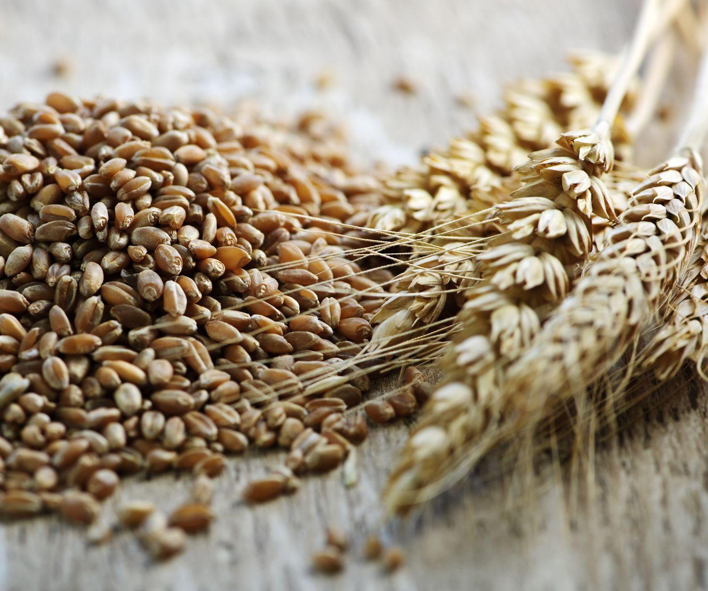 Venta de cereales en Toledo