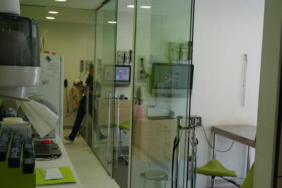 Foto 2 de Peluquerías caninas en Mollet del Vallès | Hospital Veteralia Movet 24 H