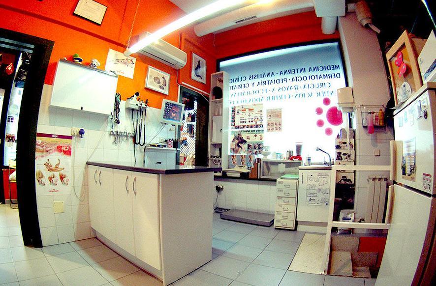 Medicina preventiva: Servicios de Centro Veterinario Los Alpes
