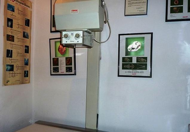 Radiología : Servicios de Centro Veterinario Los Alpes