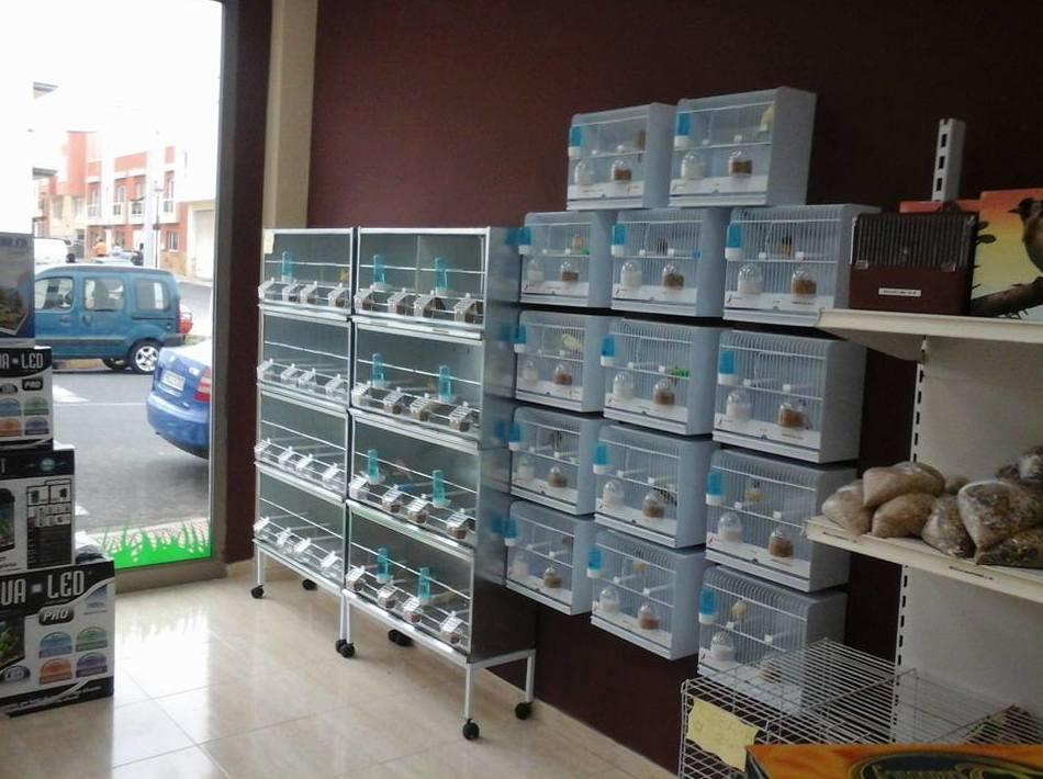Tienda de animales en Fuerteventura