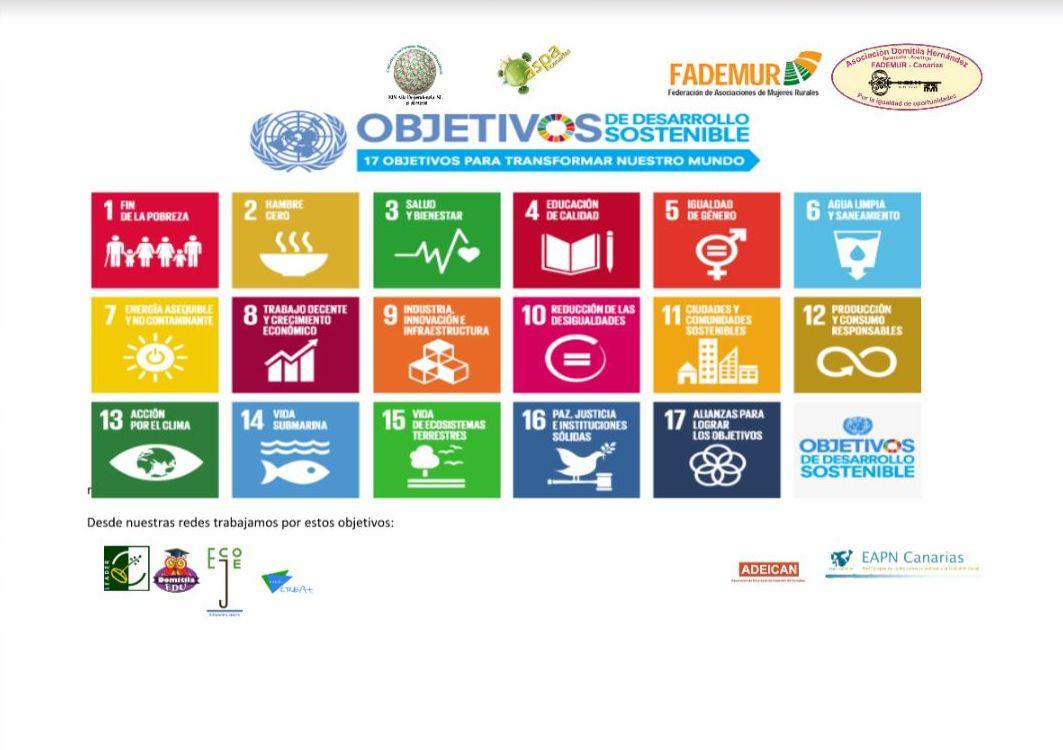 Foto 22 de Asociación sin ánimo de lucro especializada en la promoción de Igualdad de Oportunidades en Santa Cruz de Tenerife | Asociación Domitila