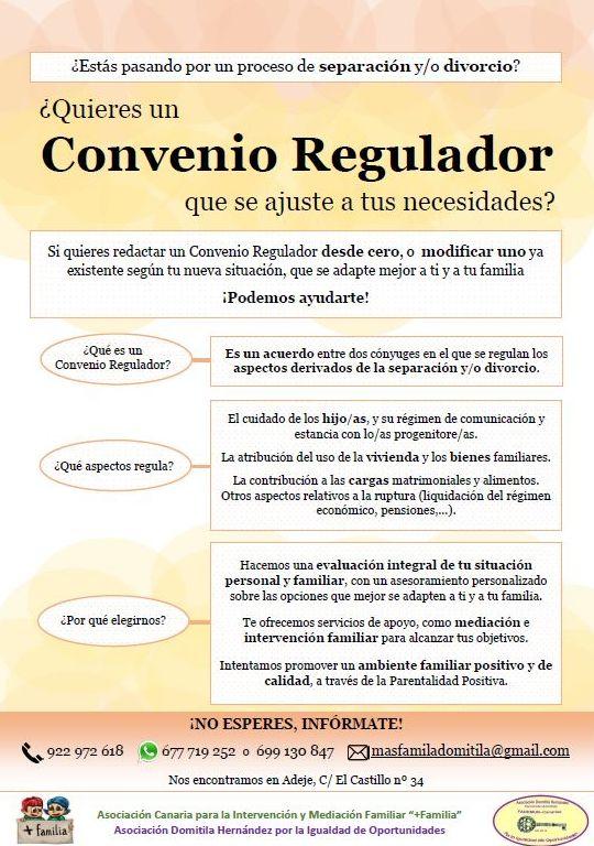 El convenio regulador: Proyectos y Servicios de Asociación Domitila