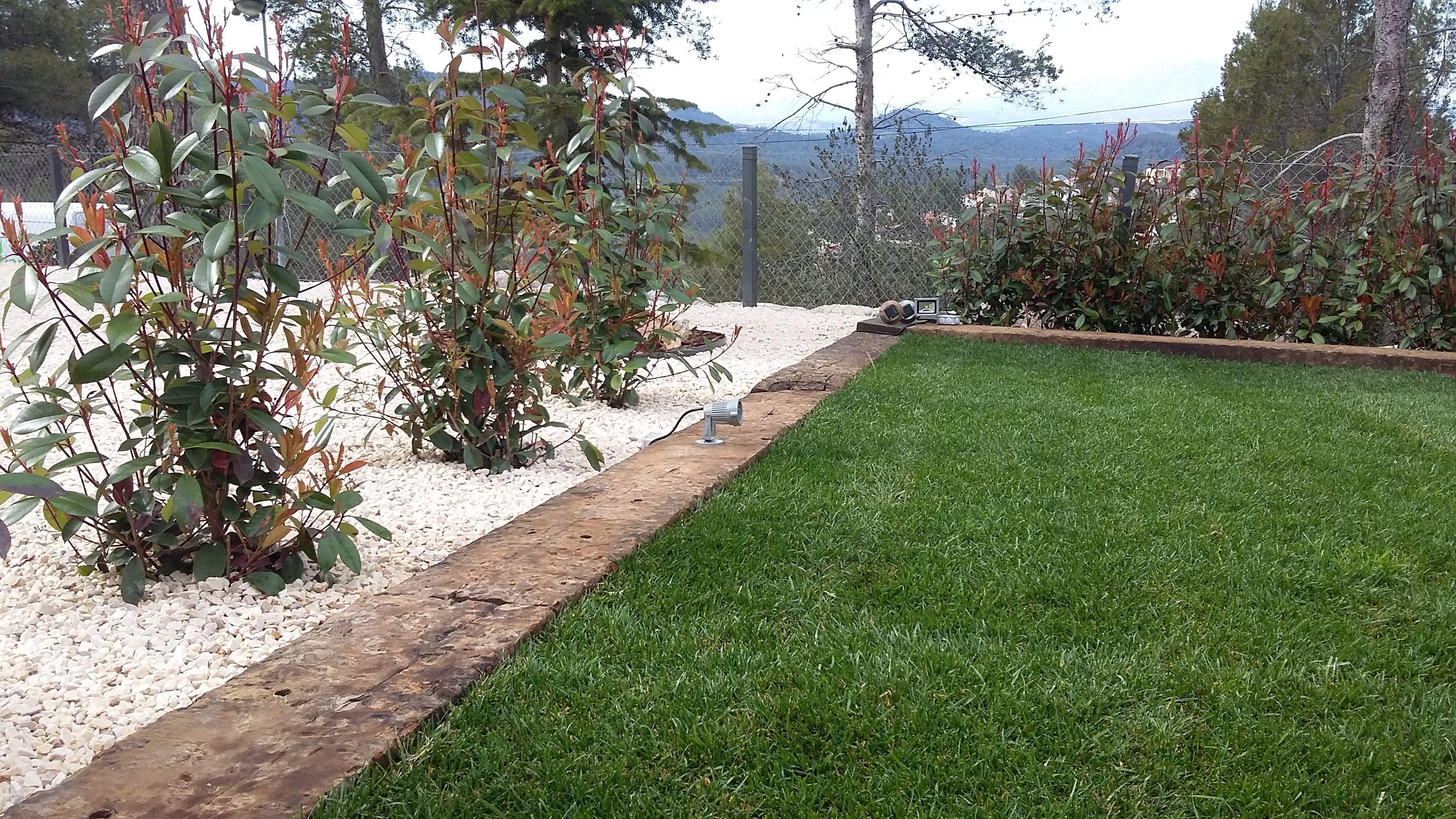 Foto 88 de Diseño y mantenimiento de jardines en Olesa de Montserrat | Jardiart