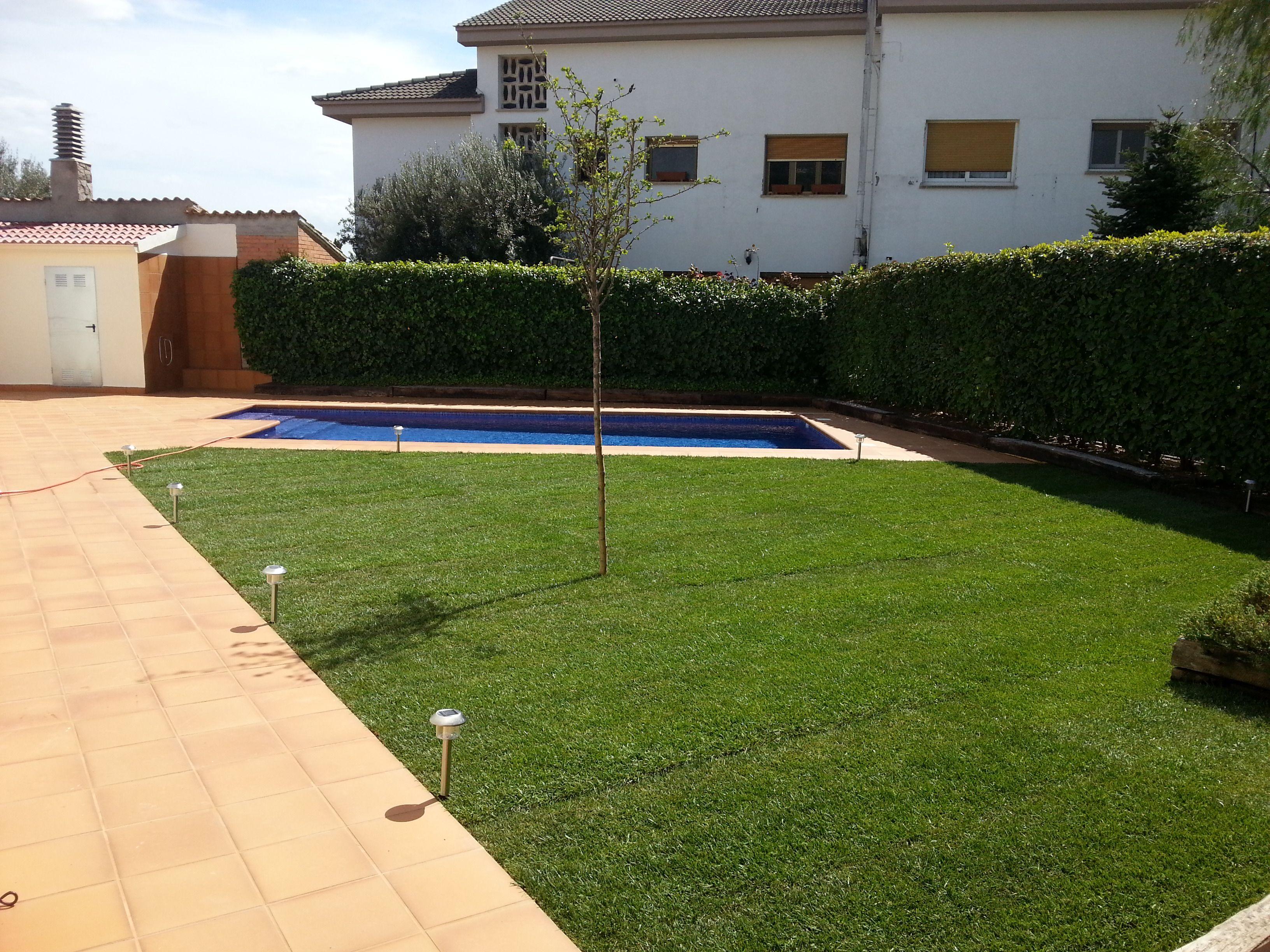Foto 18 de Diseño y mantenimiento de jardines en Olesa de Montserrat | Jardiart