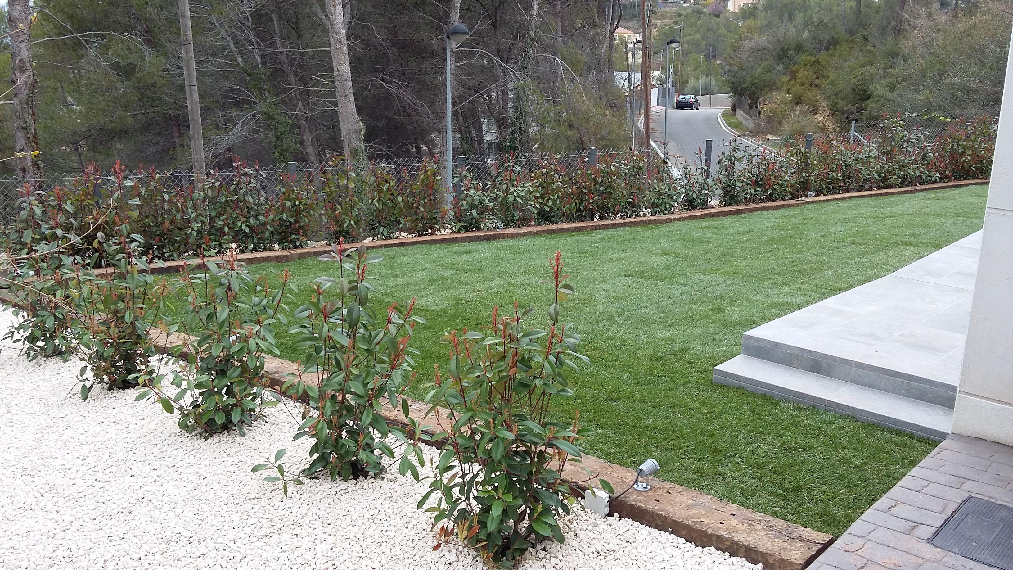 Foto 95 de Diseño y mantenimiento de jardines en Olesa de Montserrat | Jardiart