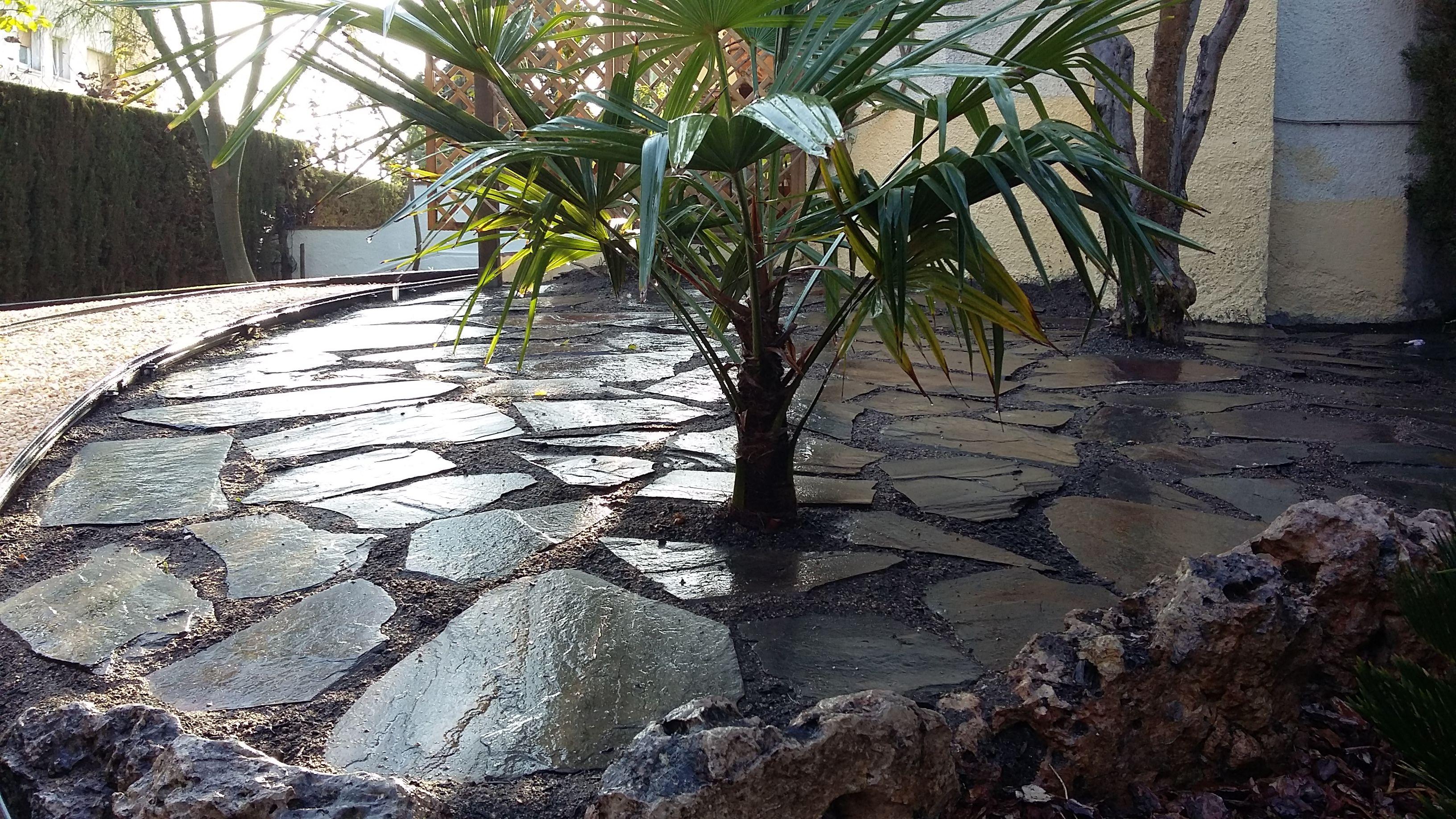 Foto 72 de Diseño y mantenimiento de jardines en Olesa de Montserrat | Jardiart