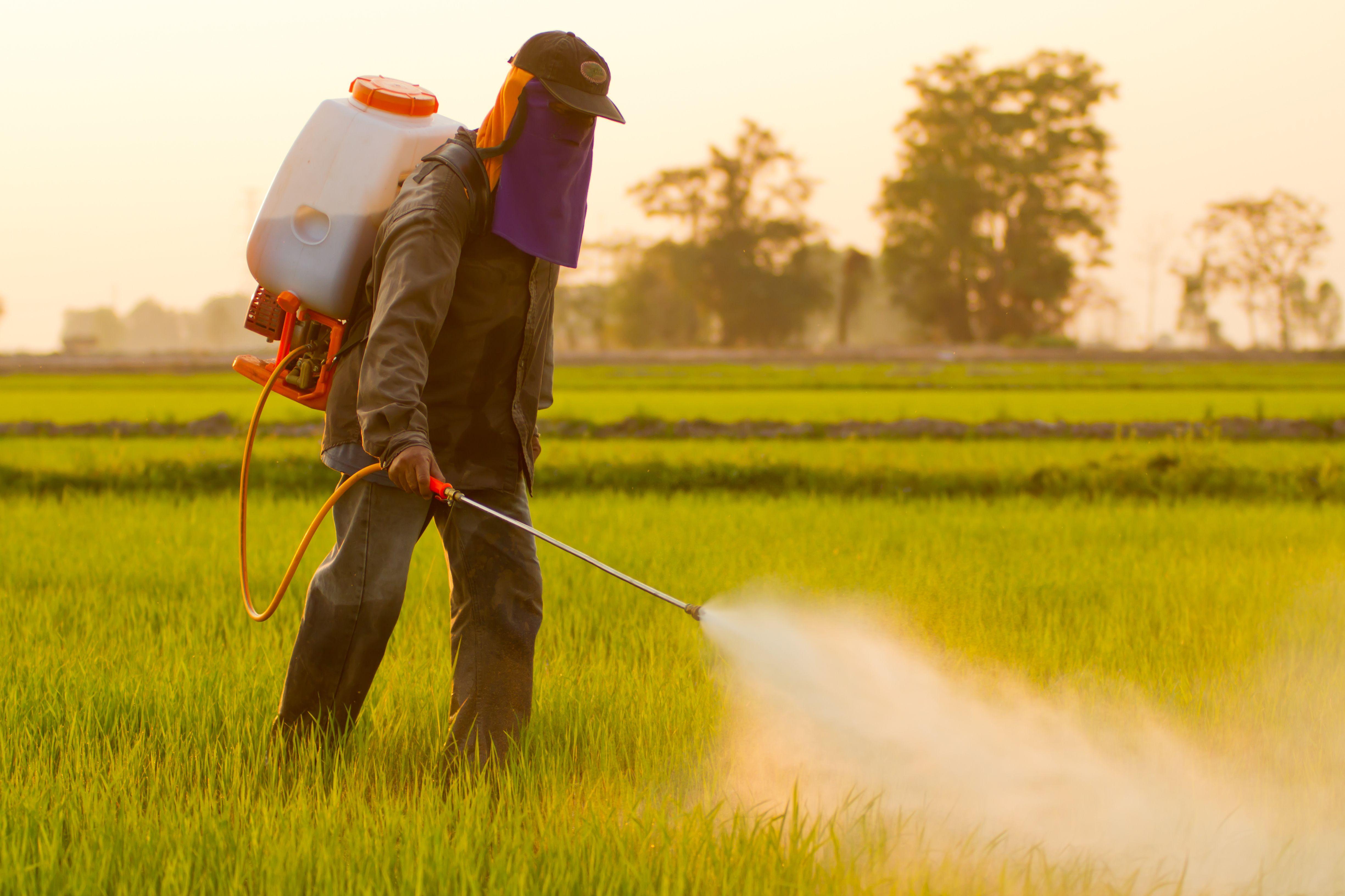 Herbicidas: Productos y servicios de SiA Consultores Servicios Agroalimentarios
