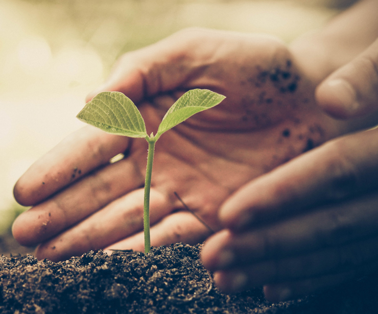 Venta de fertilizantes en Logroño