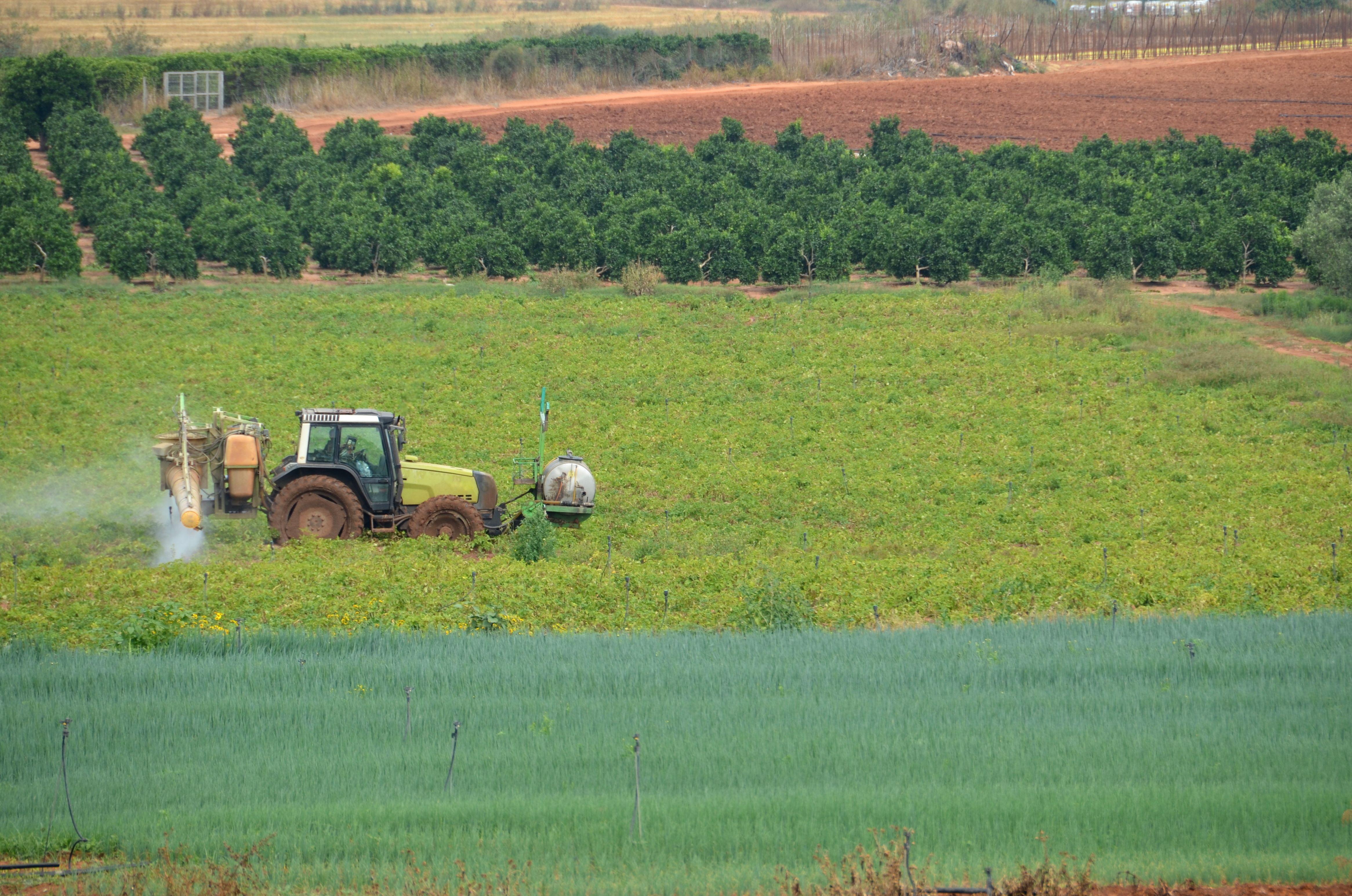 Servicios de asesoramiento al sector primario: Productos y servicios de SiA Consultores Servicios Agroalimentarios
